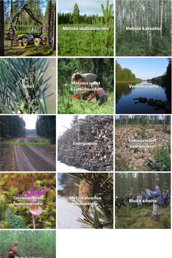 Metsänhoitokortiston aihekuvat